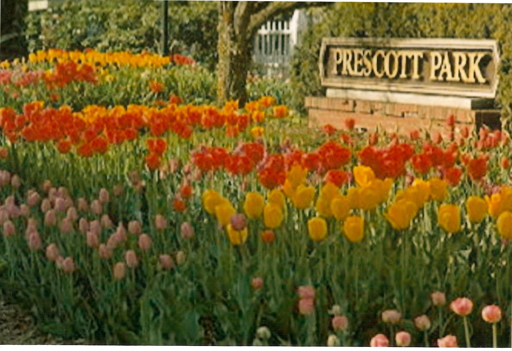 book - Prescott Park